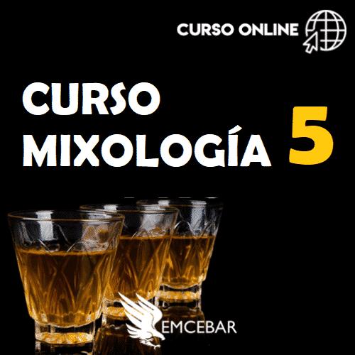 curso-de-mixologia-5