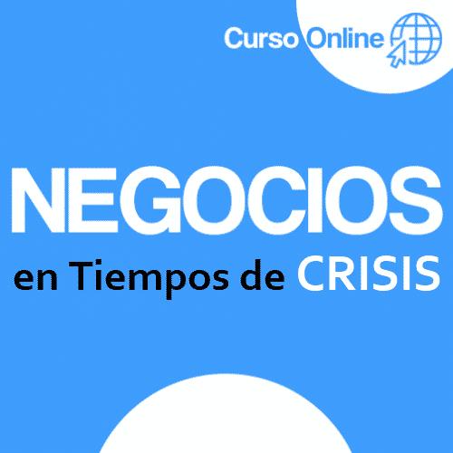 Negocios en Tiempos de Crisis