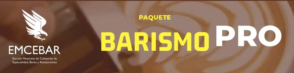 PAQUETE BARISMO PRO