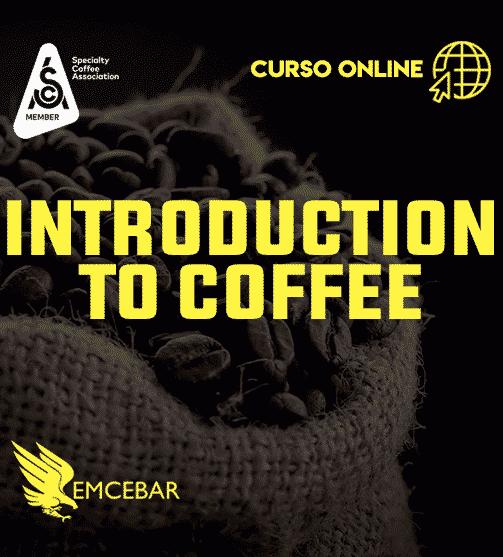 Introduction to Coffee (Curso SCA con Certificación)